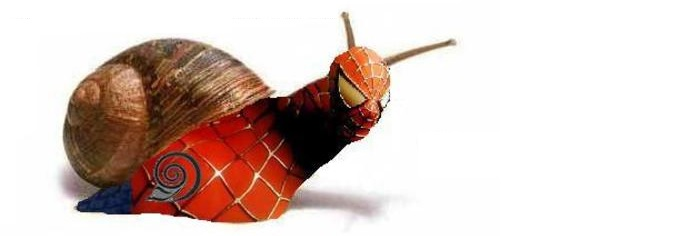 Spiderman-Caracol